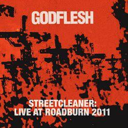 Streetcleaner-Live at Roadburn 2011