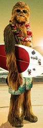 Chewbacca - Surfin'