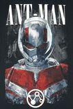 Endgame - Ant-Man