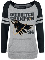 Quidditch Champion
