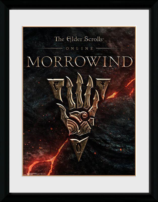 Online Morrowwind - Logo