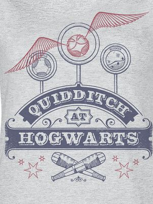 Quidditch at Hogwarts