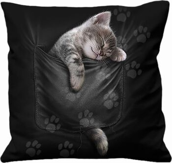 Pocket Kitten