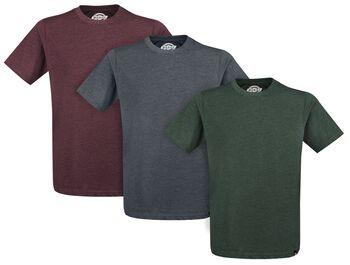 Hastings T-shirt 3-pak